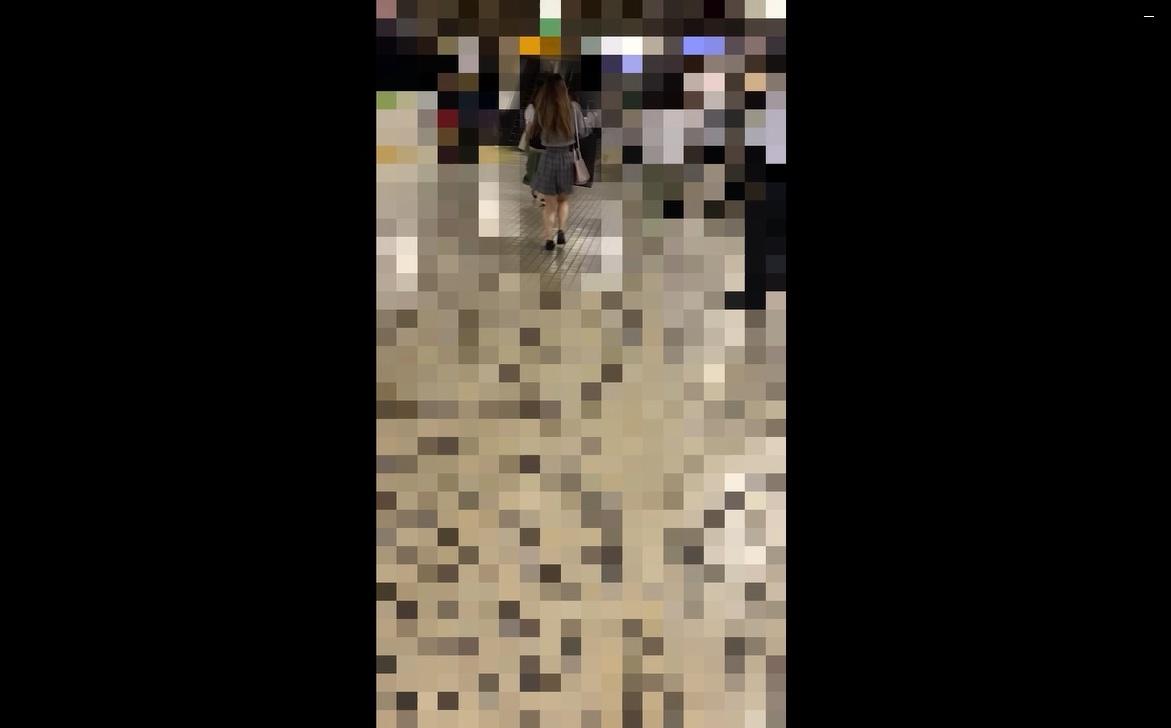 痴漢記録日記vol.50【1人目:キュロットスカート】画像つき詳細レビュー