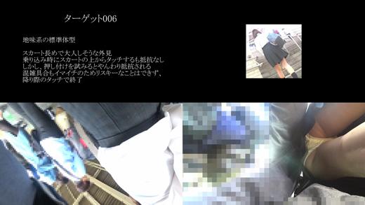 真・玄人痴漢 ファイル006(B級)